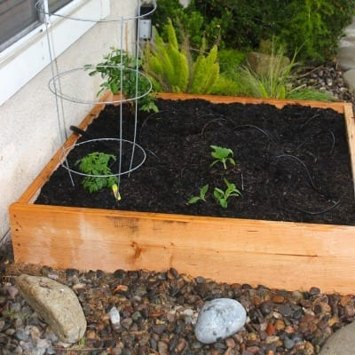 how to build a vegetable garden box